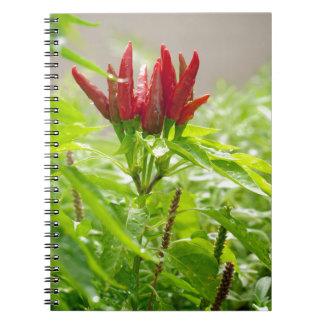 Chili flower spiral notebook