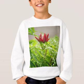 Chili flower sweatshirt