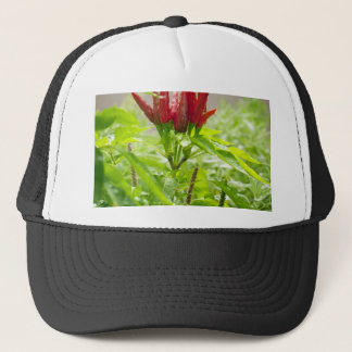 Chili flower trucker hat