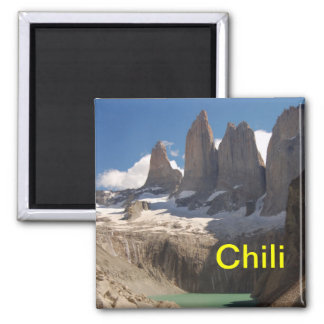 Chili fridge magnet