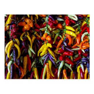 Chili pepper postcard