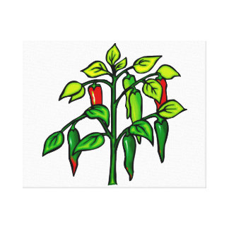 Chili Plant Many Peppers Graphic Canvas Prints
