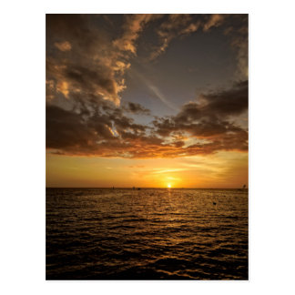 Chill Out in the Florida Sunset Postcard