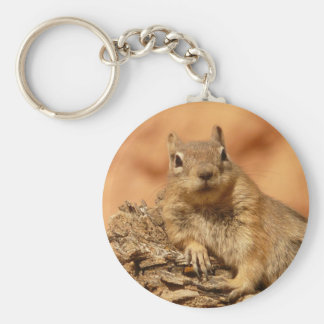 Chilled Out Ground Squirrel Key Ring
