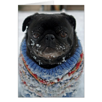 Chilly Pug Note Card - blank