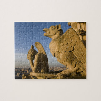 Chimera on facade of Notre Dame Cathedral, Puzzle