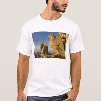 Chimera on facade of Notre Dame Cathedral, T-Shirt