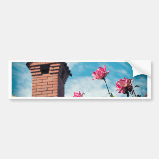 Chimney and wild roses bumper sticker