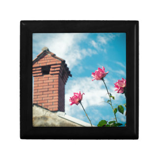 Chimney and wild roses gift box
