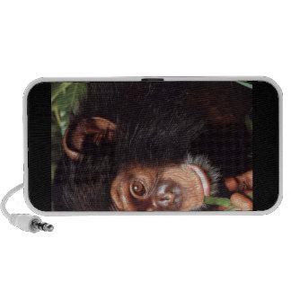 Chimpansee Mp3 Speakers