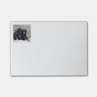 Chimpanzee 002 post-it notes