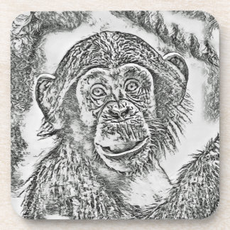 Chimpanzee 20161101 coaster