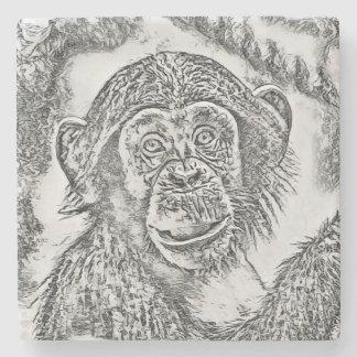 Chimpanzee 20161101 stone coaster