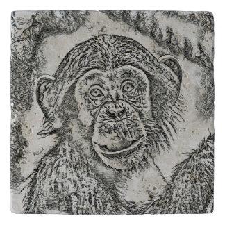 Chimpanzee 20161101 trivet