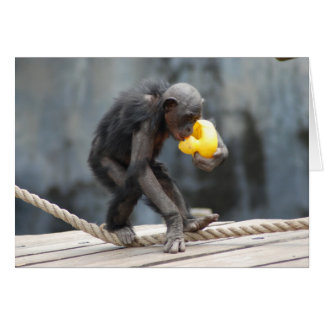 Chimpanzee and Rubbery Ducky Card