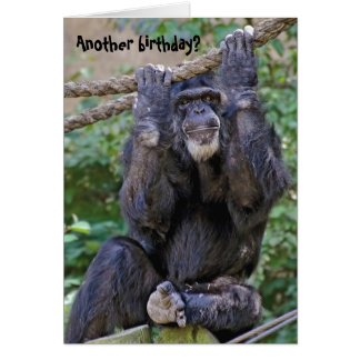 Chimpanzee Birthday Humor Card
