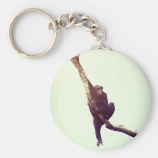 Chimpanzee in Tree Key Ring