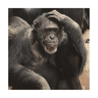 Chimpanzee thinking wood wall decor