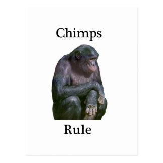 Chimps rule postcard