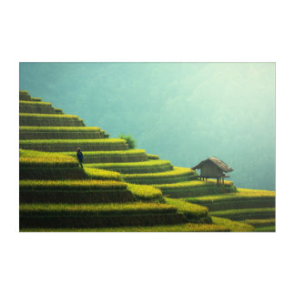 China agriculture rice harvest acrylic wall art