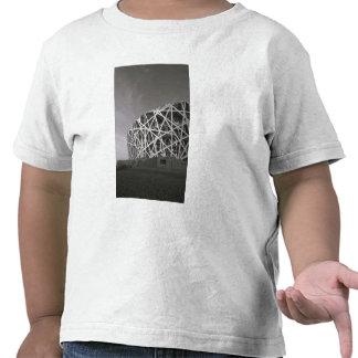 China, Beijing. National Stadium, Venue for the Tee Shirt