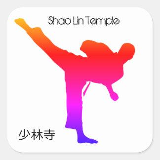 China Sticker - Shao Lin Temple