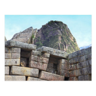 Chinchilla at Machu Picchu, Peru Postcard