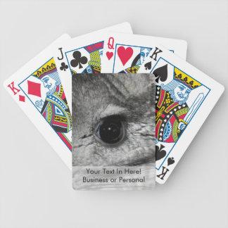 Chinchilla poker