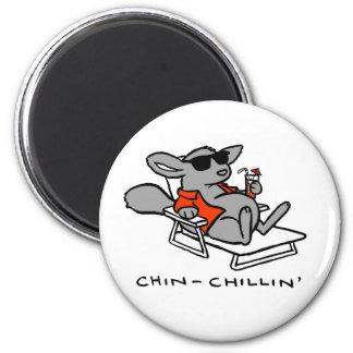 chinchillin magnet
