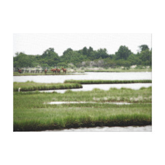Chincoteague Ponies in The Marsh Canvas Print