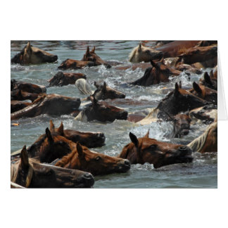 Chincoteague Pony Swim Card