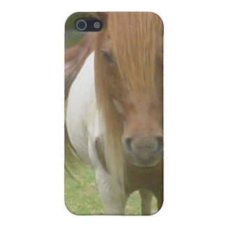 Chincoteague Wild Pony Case For iPhone 5