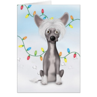 Chinese Crested 2 Christmas CR1 Card