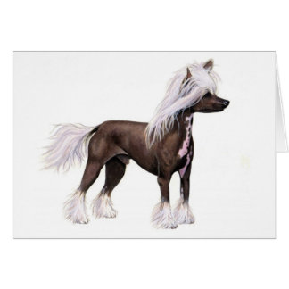 Chinese Crested Card