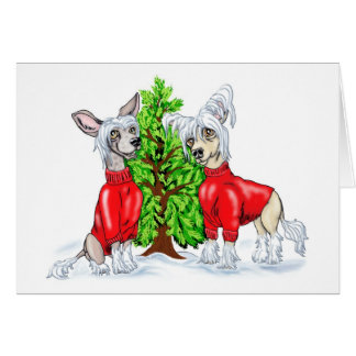 Chinese Crested Christmas Tree Card