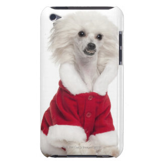 Chinese Crested Dog (1 year old) wearing a iPod Case-Mate Cases