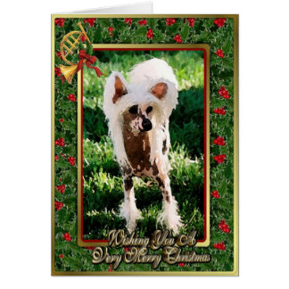 Chinese Crested Dog Blank Christmas Card