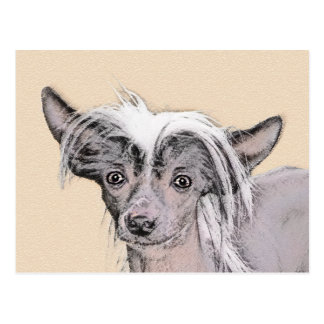 Chinese Crested (Hairless) 2 Postcard