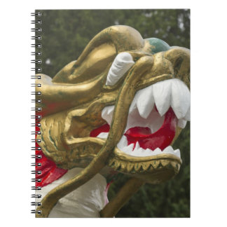 Chinese dragonboat figurehead, Stanley Park Notebooks