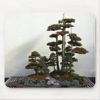 Chinese Juniper Bonsai Trees Mouse Pad