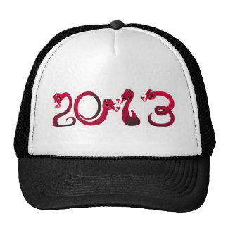 Chinese New Year 2013 Year of the Snake Hat