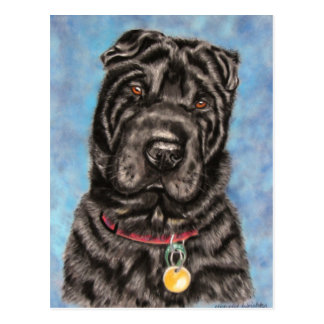Chinese Shar-Pei Dog Art - Tia Postcard