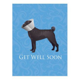 Chinese Shar Pei Get Well Soon Design Postcard