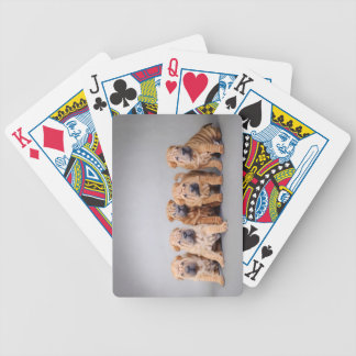 Chinese Shar pei puppies Bicycle Playing Cards