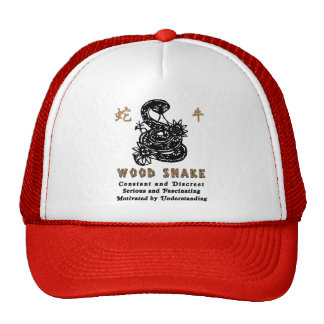 Chinese Year of the Wood Snake 1965 Mesh Hats