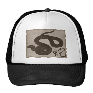 Chinese Zodiac Year of The Snake Mesh Hat