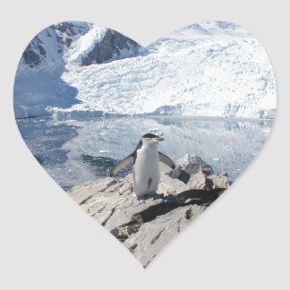 Chinstrap Penguins in Antarctica Sticker