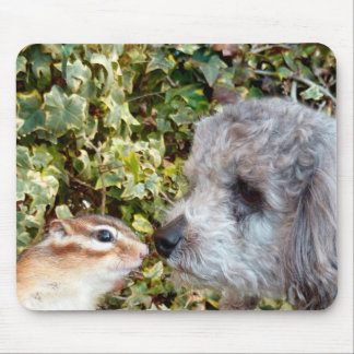 chipmunk and dog (poodle) mouse pad