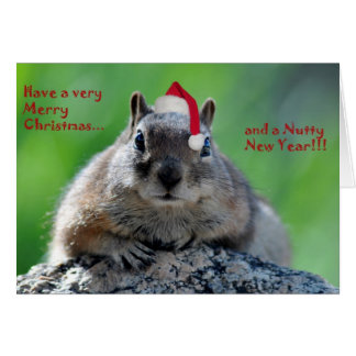 Chipmunk Christmas card