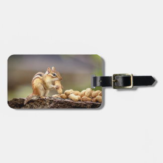 Chipmunk eating a peanut luggage tag